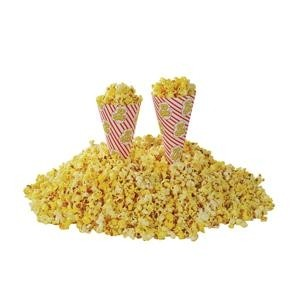 Coni per popcorn 250pz
